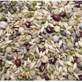 Avian Naturals OCIA Certified Organic Sprout Mix