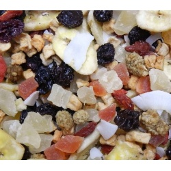 Avian Naturals Tootie Fruity All Treat Mix