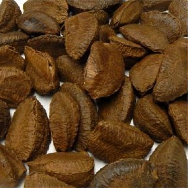 Brazil Nuts in Shell Organic