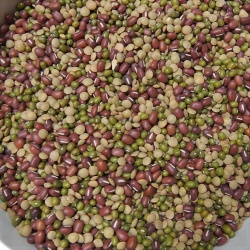 Bean Salad Sprouts 1/2 lb